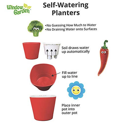 Window Garden Sow Much Fun Seed Starting, Vegetable Planting and Growing Kit for Kids, 3 Self Watering Planters, Soil, Seeds and Puffy Stickers. No Mess, Easy, Works Great! (Pumpkin)