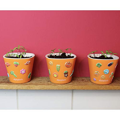 Window Garden Sow Much Fun Seed Starting, Flower Planting and Growing Kit for Kids, 3 Self Watering Planters, Soil, Seeds and Puffy Stickers. No Mess, Easy, Works Great! (Marigold)