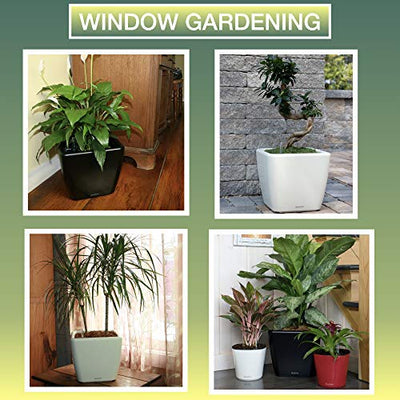 "Window Garden Aquaphoric Self Watering Planter (11"") + Fiber Soil = Foolproof Indoor Home Garden. Modern Decorative Planter Pot for House Plants, Flowers, Herbs, Vegetables, Tropical. Easy."