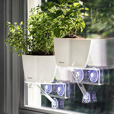 Window Garden Veg Ledge Shelf Aquaphoric Self Watering Planter Kit Bundle - Grow Indoor Live Plants or Seeds - Herbs, Greens, Flower on Your Window. Gorgeous Kitchen Decor. Powered by Outdoor Light.