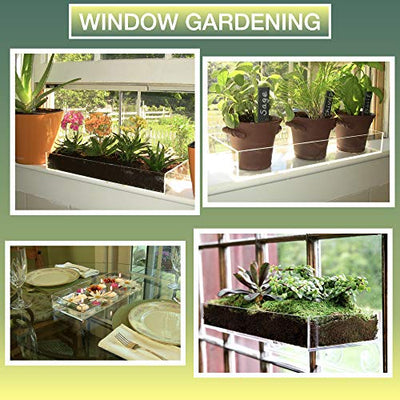 Window Garden Multi-Use Acrylic Planter Tray + Fiber Soil + Sprayer = Gorgeous Succulent, Dish and Herb Gardens | Grow Microgreens, Wheatgrass Seed | Centerpiece | Drip Tray | Fairy Gardens (2 Pack).
