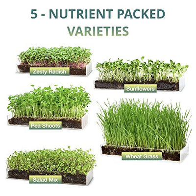 "Window Garden Microgreen Assortment 5 Pack Refill – Use with Grow n Serve Kit, Multi-Use 15"" x 6"" Planter Tray, Pre-Measured Soil + Seed, Zesty Radish, Sunflowers, Pea Shoots, Wheat Grass and Salad."