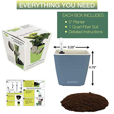 "Aquaphoric Self Watering Planter (5"") + Fiber Soil = Foolproof Indoor Home Garden. Decorative Planter Pot for All Plants, Flowers, Herbs, African Violets, Succulents. Easy Looks Great. (Slate Matte)"