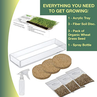 Organic Wheatgrass Growing Kit with Style x 3 – Plant an Amazing Wheat Grass Home Garden, Juice Healthy Shots, Great for Pets, Cats, Dogs. Complete with Stunning Tray and Accessories. (3-Pack)