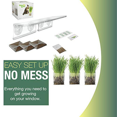 Window Garden Double Veg Ledge Shelf Pop Up Cat Grass Kit Bundle - Grow Cat Grass on Your Indoor Window. Perfect Place for Growing Organic Non GMO Wheatgrass Treats for Cats, Out of Reach in The Sun