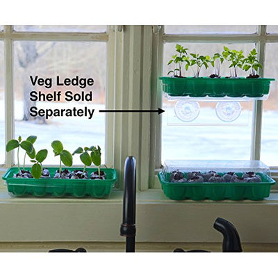 Window Garden - Romaine Lettuce Vegetable Starter Kit - Grow Your Own Food. Germinate Seeds on Your Windowsill Then Move to Patio Planter or Veggie Patch. Mini Greenhouse System - Easy. (Romaine Lettuce)