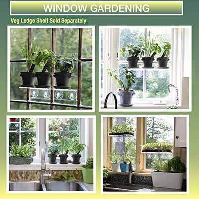 Window Garden Rustic Charm Herb Trio Kit - Grow an Indoor Kitchen Windowsill of Fresh Basil, Chives ,Sage, Plants by Seeds. Stunning Set of Planters with Fiber Soil, Slate Pot Makers. Great Gift.