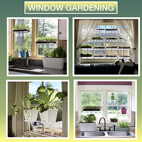 Window Garden Double Veg Ledge – Create an Indoor Garden, Hold Your Planter Pots, Seed Starter, Figurines on Your Window. Grow Herbs, Microgreens, Succulents, Sleek, Dependable. (1 Pack)