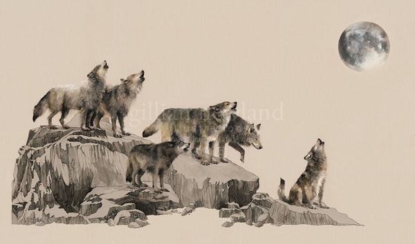 Animal Series: Wolf Pack