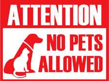 NP PETS ALLOWED