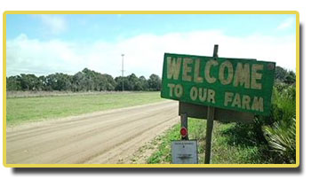 Welcome to Legare Farms
