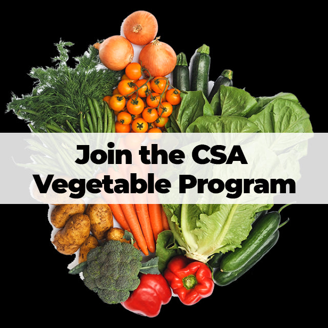 Winter CSA vegetable program