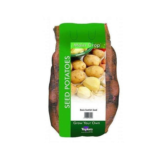 Taylors Bulbs Seed Potatoes Taylors Cara Seed Potatoes 2kg