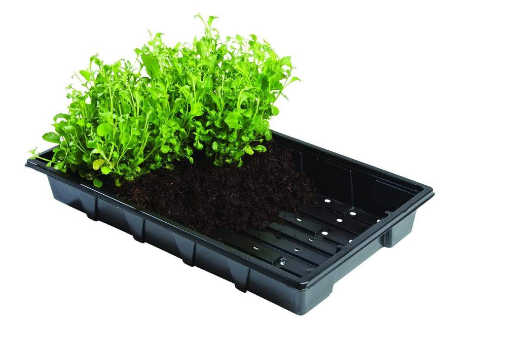 Garland Seed Trays Professional 40 Cell Inserts 5 pack
