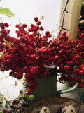 Red Berry Sprigs
