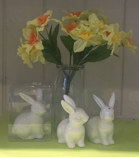 Ceramic rabbit cruet set