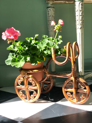 Rattan Wicker Bicycle Planter