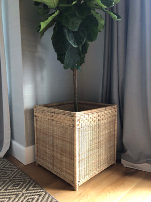 XXL Wicker Planter/Jardiniere