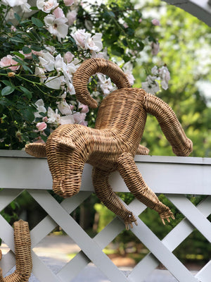 Baby Wicker Monkeys