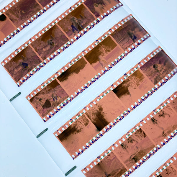 Colour (C41) Film Developing