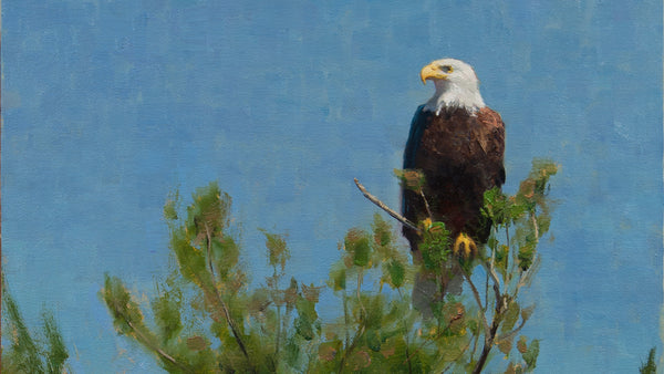 """THE RETURN"" Painting an Eagle"