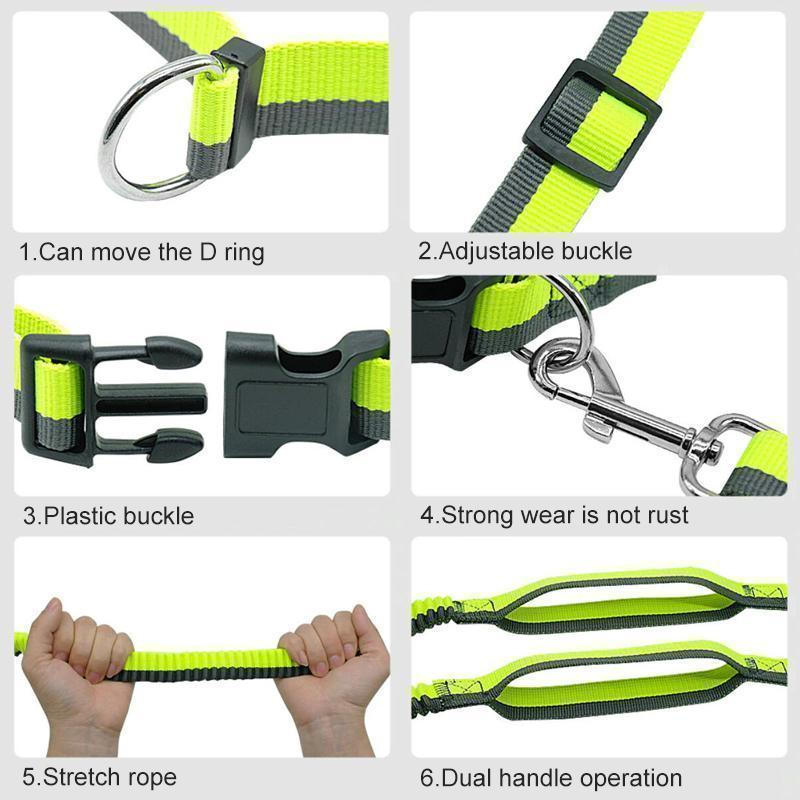 Handsfree Elastic Bungee Dog Leash