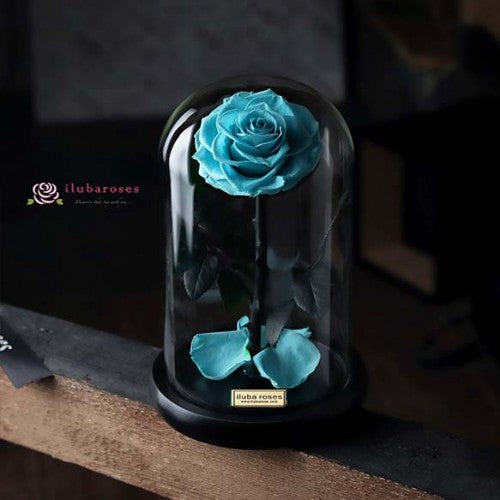 turquoise blue rose gift in glass vase at Iluba Roses flower shop