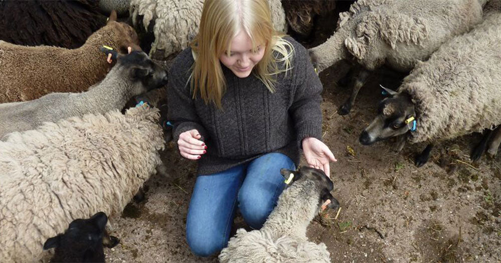 Girl wears 100% sheeps wool casual brown jumper with jeans