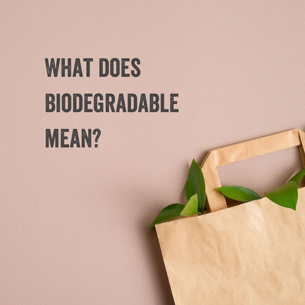 What Does Biodegradable Mean? (Biodegradable Meaning, Materials, & More Explained)