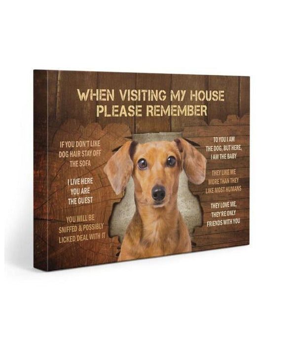 Dachshund When Visting My House Gallery Wrapped Canvas Prints