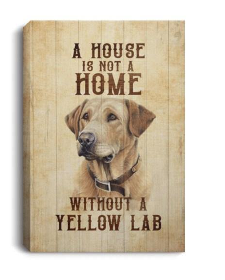 A House Is Not a Home Without a Yellow Lab Labrador Gallery Wrapped Framed Canvas Prints