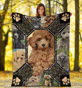 Dog Blanket 3D Cute Poodle Dog Lover Gifts Fleece Blanket - Family Presents - Great Blanket, Canvas, Clothe, Gifts For Family