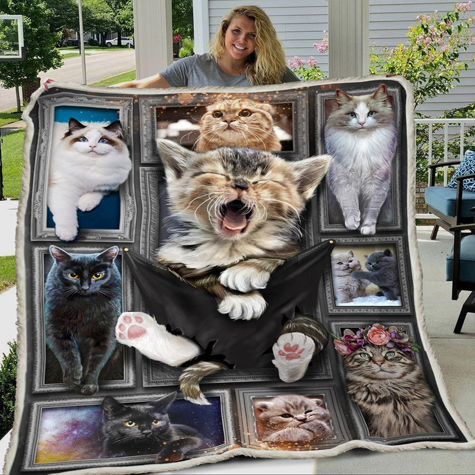3D Huge Cat Blanket