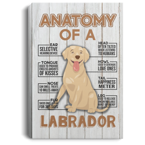 Anatomy of a Labrador Retriever Canvas Wall Art - Anniversary Birthday Christmas Housewarming Gift Home