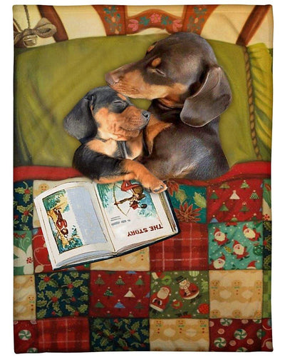 Dachshunds full of love in Xmas blanket