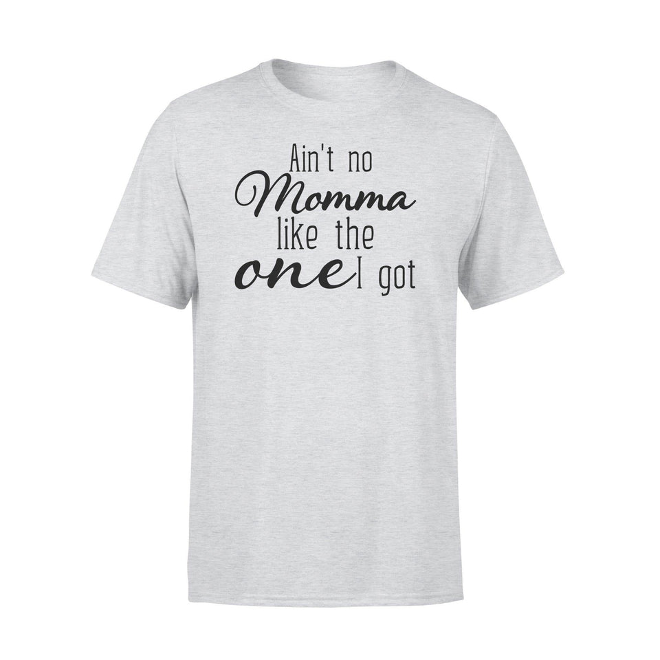 Aint No Momma Like One I Got Premium Tee - Family Presents