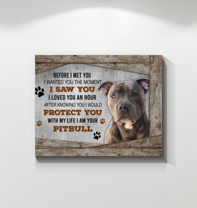Pitbull - I Would Protect You After Knowing You - Canvas