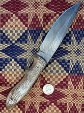 Load image into Gallery viewer, Bone Handled Damascus Knife 10.5 inch Green/Brown