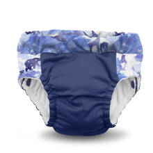 Load image into Gallery viewer, Lil Learnerz Training Pants & Swim Diaper - Frozen 2 pack