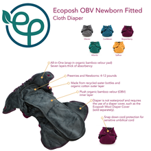 Load image into Gallery viewer, Ecoposh OBV Newborn Fitted Cloth Diaper - Glacier