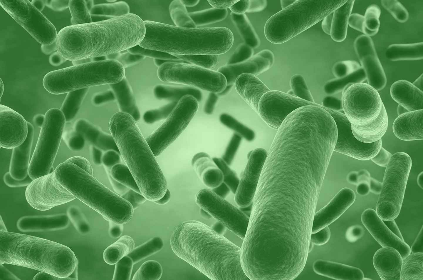 Probiotics 101: What are Human Origin Strains?