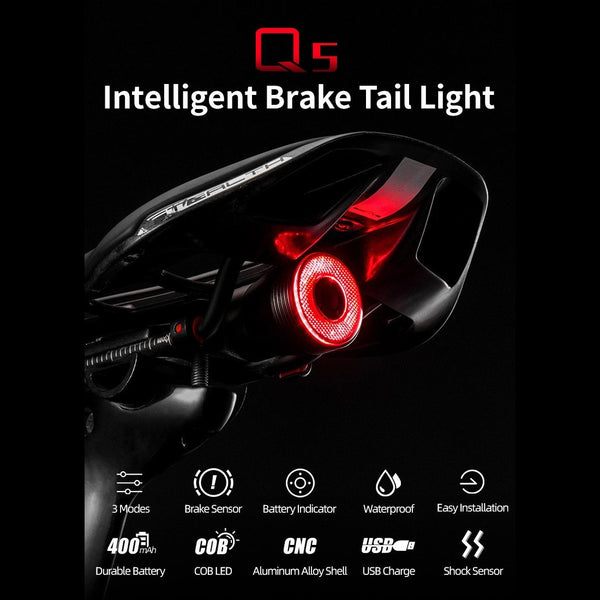 ROCKBROS Bicycle LED Tail Light Rechargeable Intelligent Brake Sensing