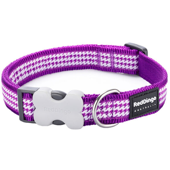 Red Dingo Design Dog Collar - Purple Dogtooth