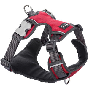 Red Dingo Padded Harness Red