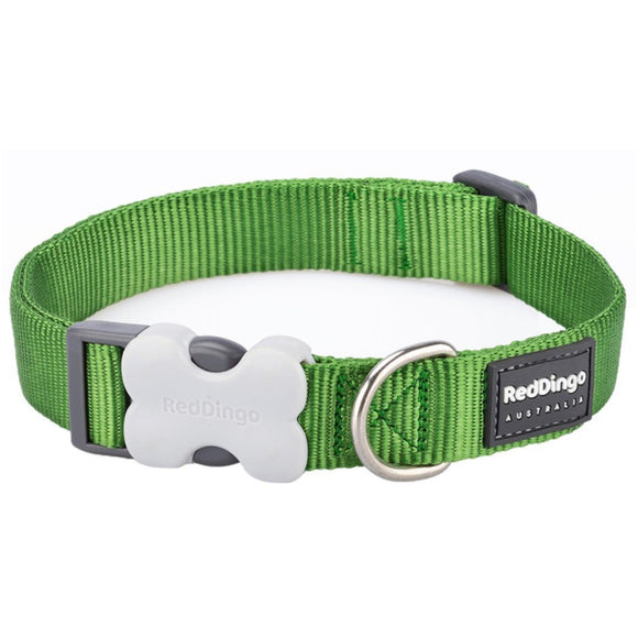 Red Dingo Plain Dog Collar Green