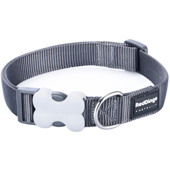 Red Dingo Plain Dog Collar Grey