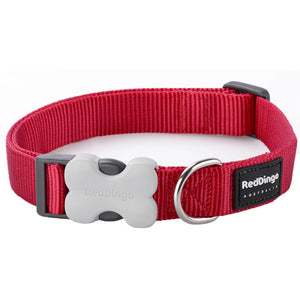 Red Dingo Plain Dog Collar Red