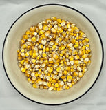 white bowl of dried whole corn
