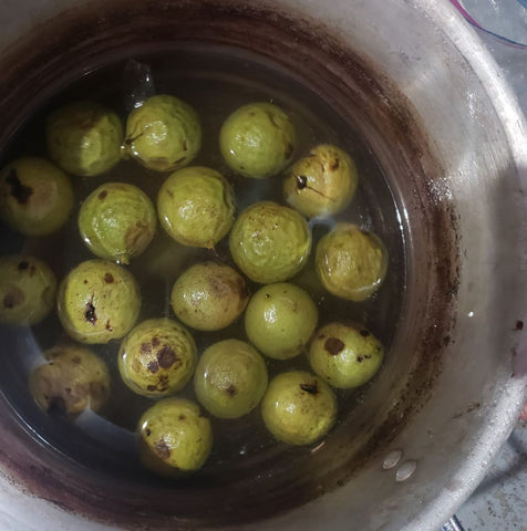 green walnuts in a metal pot covered with water