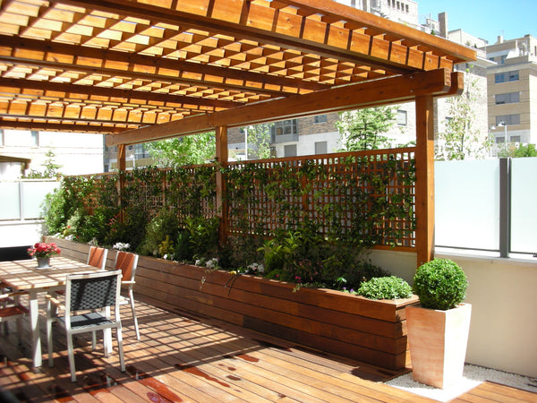 Planter box with lattice and pergola